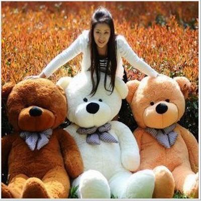 泰迪熊公仔布娃娃网店代理儿童生日毛绒玩具批发礼品厂家直营