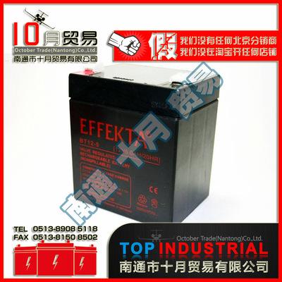 德国EFFEKTA BT12-5蓄电池 原装进口