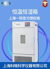 上海一恆 恆溫恆濕箱LHS-100CL