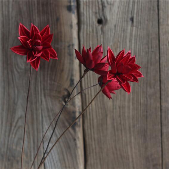 【莲的心事】莲花万博max官网白色手工植物摆设荷花拍摄道具万博手机app哪里下载荷花莲花