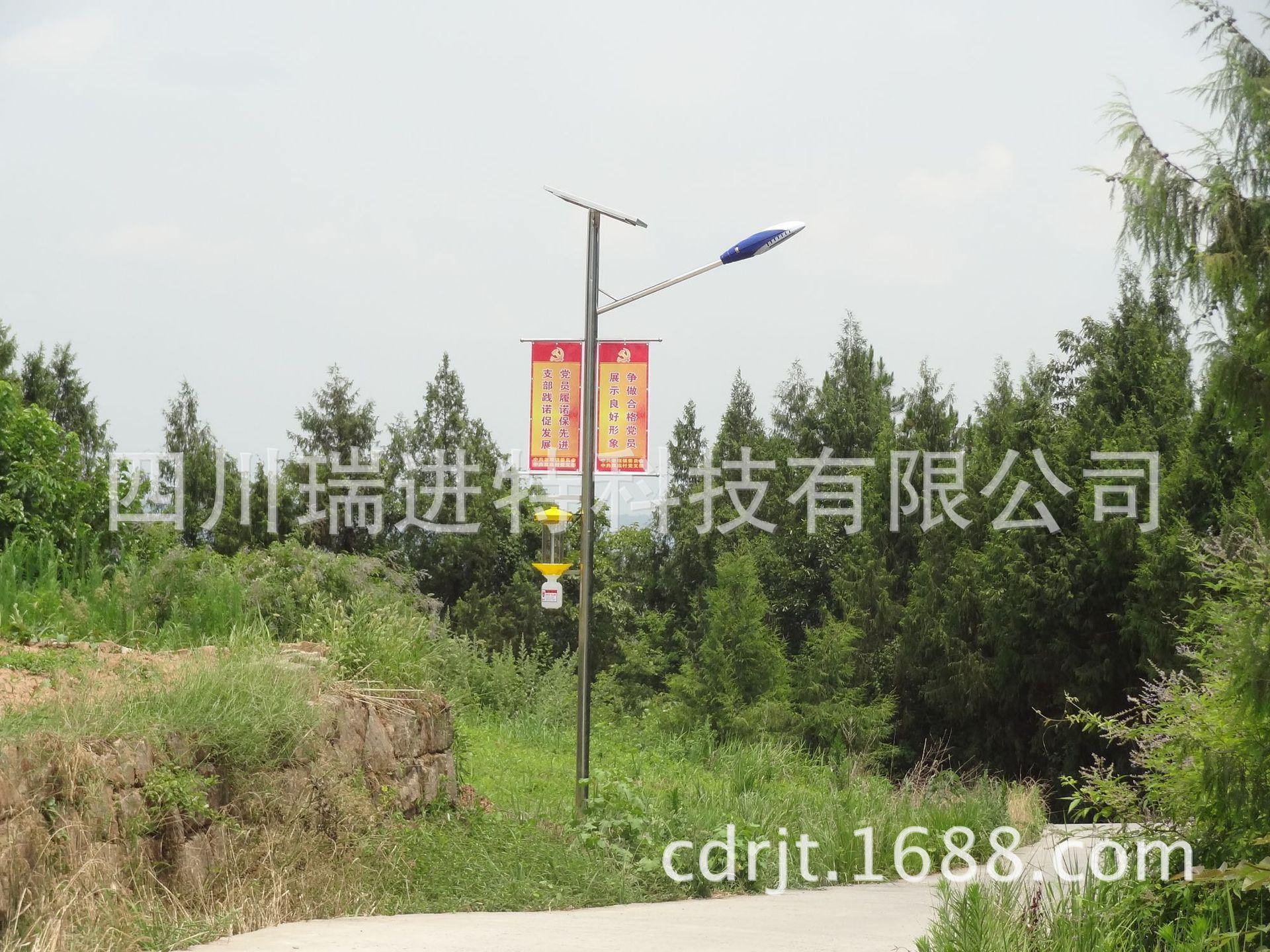 DSC02534