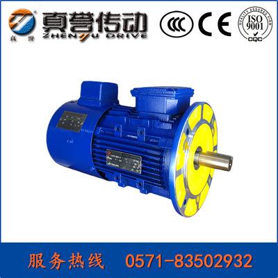 杭州真誉电机4极铝壳立式变频调速三相异步电动机IP55马达全铜线