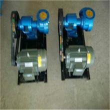 厂家生产nyp24-0.6高粘度泵 高粘度泵厂家生产 转子式高粘度泵