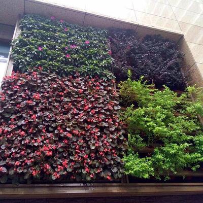 【厂家定制】高档仿真植物墙配材绿色植物绿植常春藤壁挂藤蔓叶子