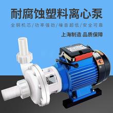 永帆 FS0.75KW塑料小型离心耐腐蚀泵104 103三相电镀厂化工厂水泵