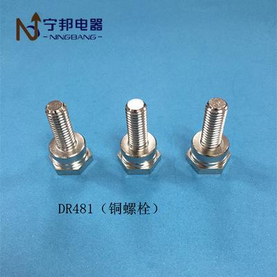 DR481 铜螺栓M8*30.5 工业电机 电容器 五金冲压配件