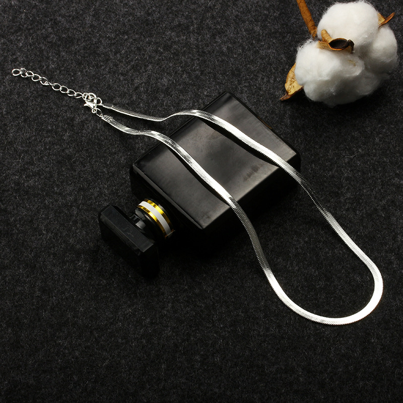 New flat snake bone chain bare chain simple silver collar short clavicle blade chain men and women jewelry NHDP203055