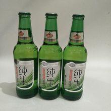 青岛啤酒 青岛纯生啤酒 青岛小瓶纯生啤酒316ml*24瓶