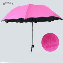 荷叶边遇水开花晴雨伞  黑胶防紫外线遮阳伞 创意广告三折伞女