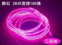 小象粉紅色led雙排2835燈帶防金黃光220V戶外臥室吊頂180紫色燈帶
