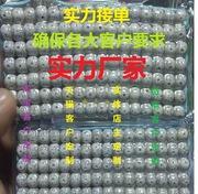 星月菩提108+12粒备珠精工干磨高抛海南星月菩提子厂家批发