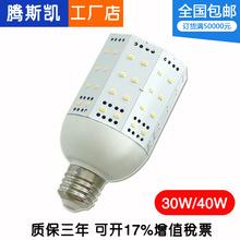 三星LED玉米灯5630LEDS 30W 40W 50W 60W 80W 三星2835玉米灯