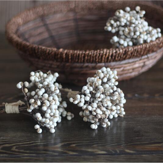 冬菇草乡村小白果干果插花素材永生花装饰花厂家直供
