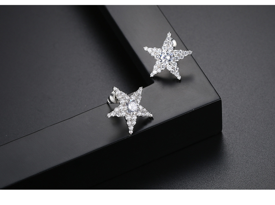 Alloy Korea Geometric earring  (platinum) NHTM0410-platinum