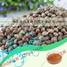 供应火麻仁提取物 10:1 南京服务好的植物提取物加工厂家