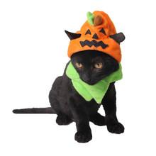万圣节宠物用品厂 狂欢鬼节狗帽子Halloween猫饰品 捣蛋鬼南瓜帽