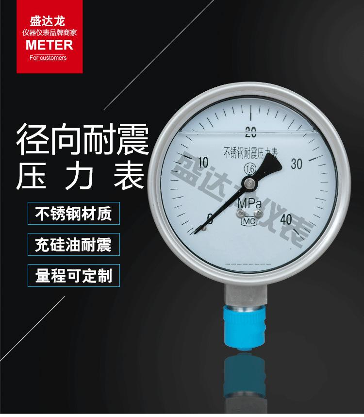 径向耐震压力表详情_01