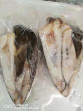 銀雪魚頭 雪魚 深海真雪魚頭 營養元素 大根2.5到3斤每只