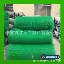 厂家销售出口型高强玻纤三维土工网垫 三层EM3高强 内加玻纤格栅