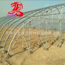 天津橢圓管廠家 30*80 30*75 30*60  鍍鋅橢圓管 大棚橢圓管