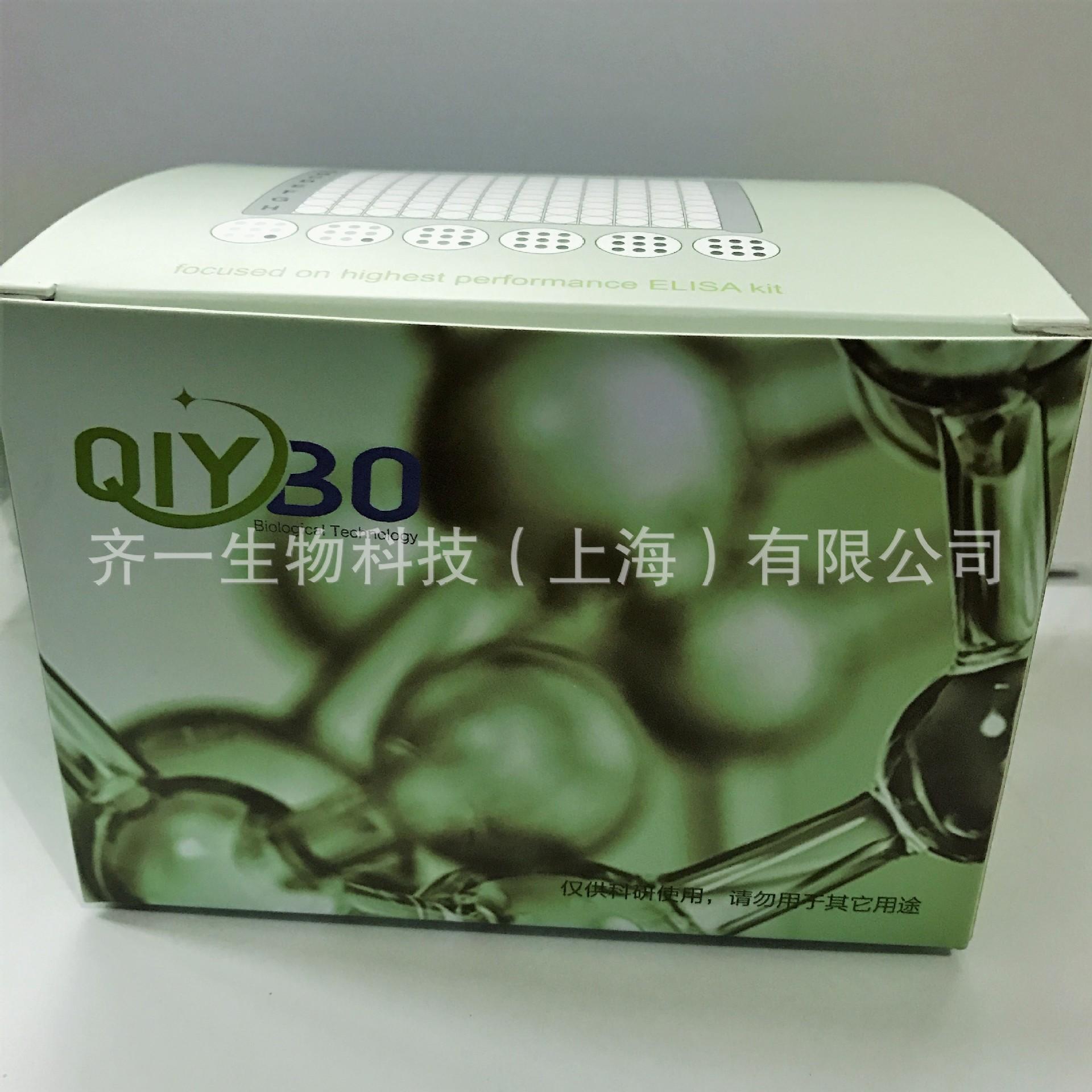 小鼠单胺氧化酶(MAO)检测试剂盒进口ELISA试剂盒厂家 齐一