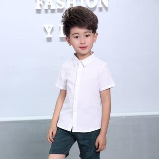 Summer boys and girls short-sleeved white shirt wholesale children's lapel bottoming shirt Korean version of children's children's clothing