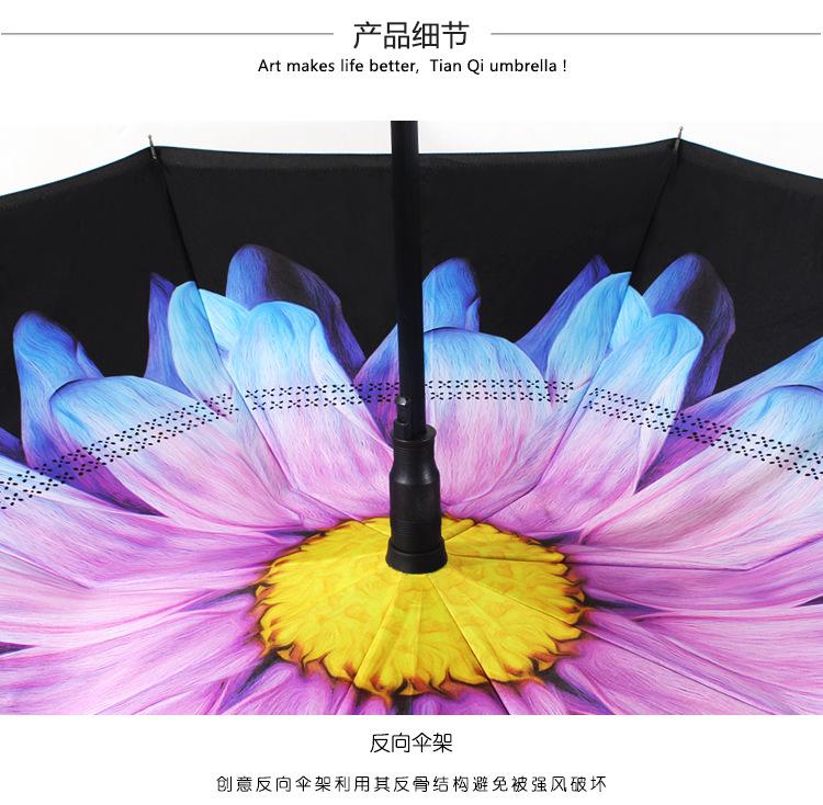 双层反向伞