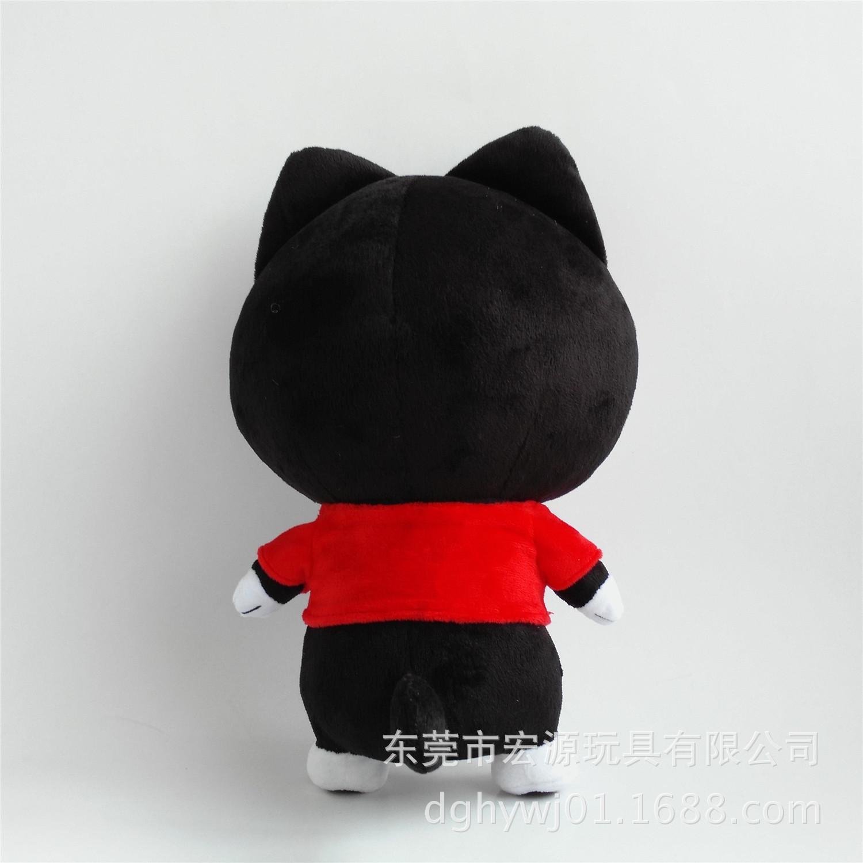 小黑猫 (1)