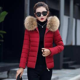 2019冬季韩版新款批外贸棉衣女短款修身棉袄羽绒棉服外套女速卖通