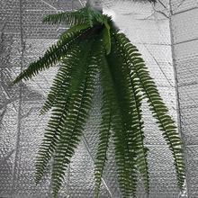 仿真软胶植物波斯草  家居装饰绿植植物墙叶子波斯叶壁挂大排草