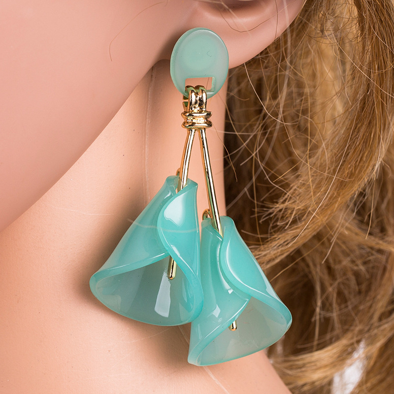 Explosion earrings wholesale fashion flower earrings acrylic wild earrings NHYT199919