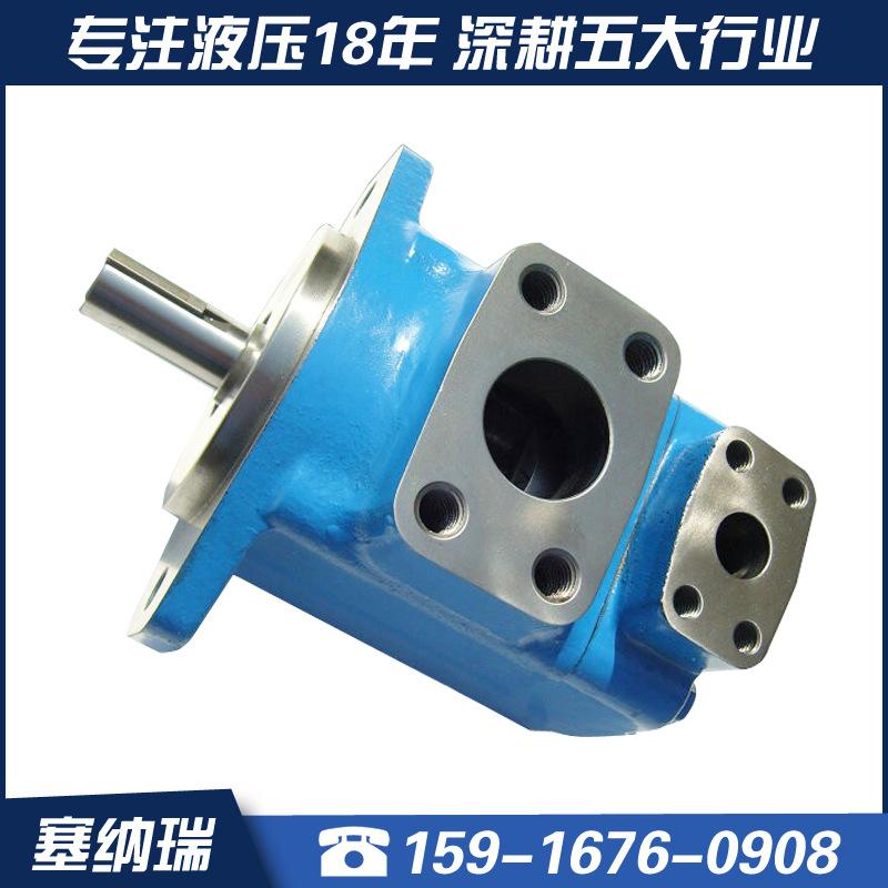 厂家直销塞纳瑞高压叶片泵 现货速发S45V-60A液压高压叶片泵