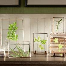碧轩Ethan铜边透明玻璃相框 DIY创意标本装饰复古摆件DIY创意相框