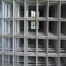 厂家直销 优质不锈钢电焊网 定制点焊网 碰焊网 焊接网 建筑网片