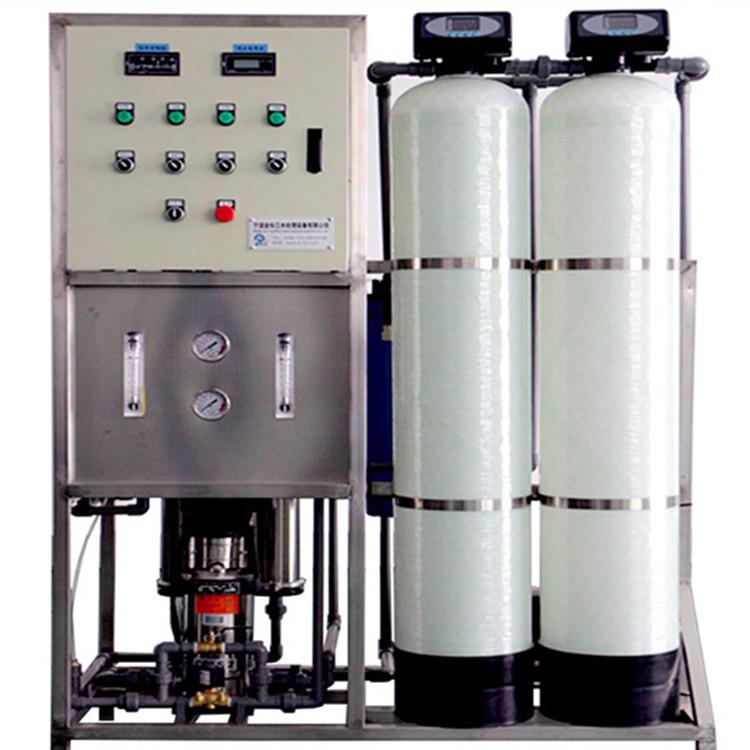 0.25吨反渗透抛光高纯水制取设备 小型去离子水设备 工业超纯水机