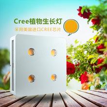 仿太阳光 全光谱LED灯 大功率植物生长灯 科瑞3070 800W 种草灯