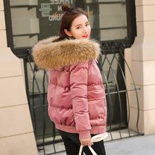 金丝绒羽绒棉衣女短款面包服新款棉袄冬季外套真毛领矮小个子棉服
