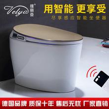 智能马桶一体式 全自动节能省电自动除臭水温调节厂家直销