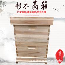 标准十框杉木蜂箱 双层蜂箱高箱 养蜂工具批发 意蜂中蜂蜂箱