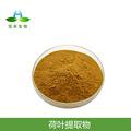 荷葉堿 4%  荷葉提取物  荷葉黃酮 1kg起訂 量大從優 包郵