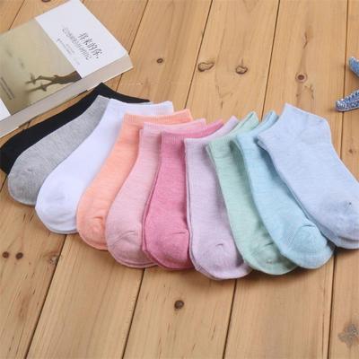 货源糖果色女士袜子 休闲彩棉女棉袜纯色隐形女船袜 浅口短袜一件代发批发