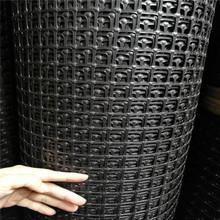 热销双向塑料经编土工格栅 护坡路基工程专用 施工方便土工格栅