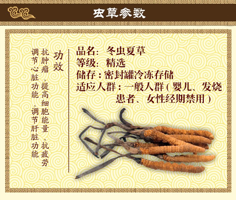 Cordyceps sinensis details page.-1_02