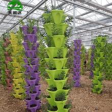 立柱式无土栽培设施 温室工程立体基质培栽培模式 草莓立体种植