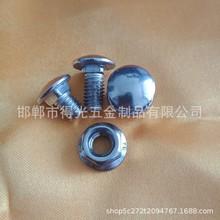 廠家直銷201 304 316不銹鋼半圓頭方頸螺絲 橋架螺絲 貨架螺絲