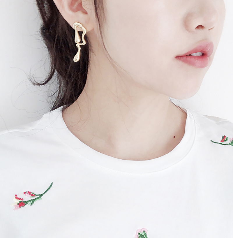 Alloy Fashion Animal earring  (Alloy) NHNMD4669-Alloy