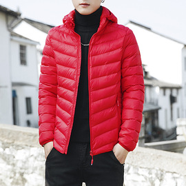 Stand collar cotton men's short paragraph Slim winter wear youth cotton suit new small jacket men's winter jacket