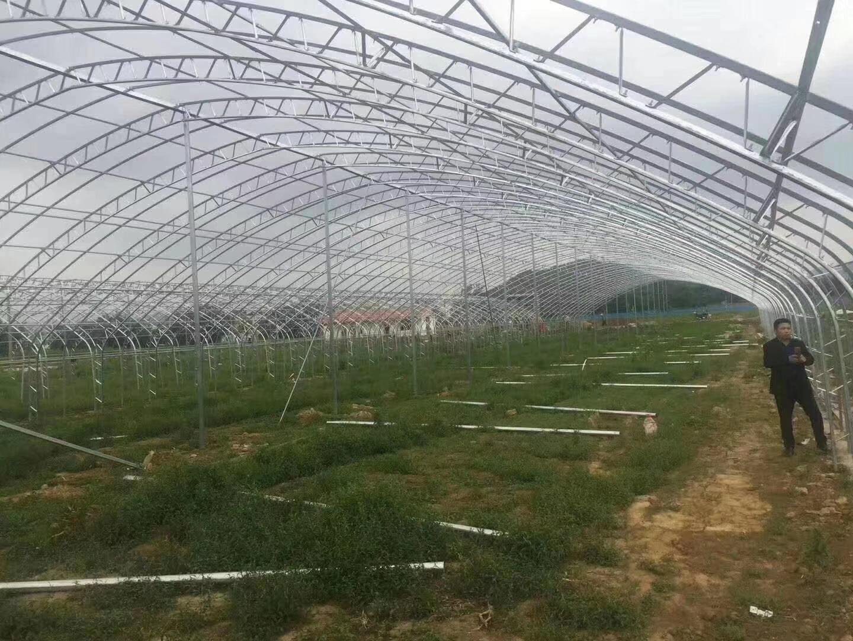 天津镀锌钢管厂家直销大棚管 养殖大棚管 蔬菜大棚管 批发配件