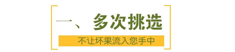 黄金罗汉果低温脱水罗汉果茶广西桂林特产东方神果