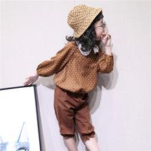 2018秋季新品童装韩版儿童学生娃娃领t恤上衣棉麻五分裤套装批发